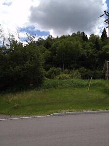 TERRAIN A BON PRIX  SUPERBE VUE Saguenay Saguenay-Lac-Saint-Jean image 1