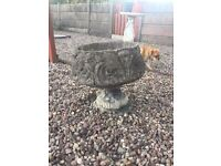 Very large stone pot