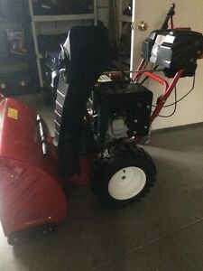 Small engine repair lawnmower/snowblower