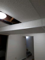 Suspended and specialty ceilings