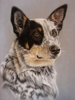 Pet Portraits of your Dog or Cat