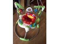 Fisher price Jumperoo **Excellent condition!**