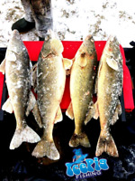 Ice Pig Fishing Professional Guide Service