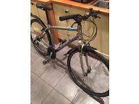 Viking dimension bike