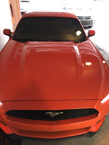 2016 Mustang in new condition orange