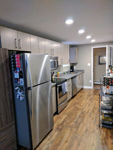 Brand New Rosewood Basement Suite