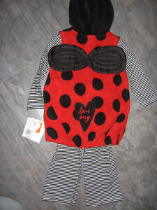 New Lady Bug Costume