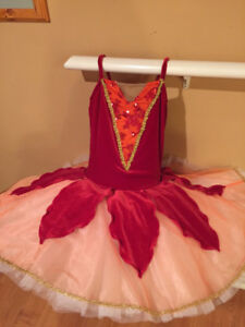 Ballet Tutu (Red and White)