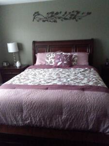 Queen-size Comforter Set
