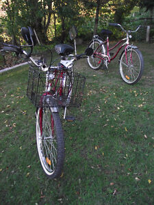 SUPERCYCLE CLASSIC CRUISER - COLLECTORS EDITION 75TH ANNIVERSARY Kingston Kingston Area image 10