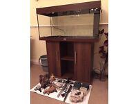Juwel Rio 180 fish tank and stand
