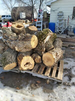 Looking for someone to mill lumber.