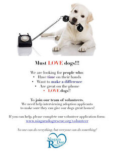 Can you please help...We need volunteers