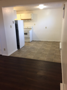 2 bedroom lower level of Duplex