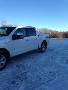 *2017*Ford*F150*Platinum*EcoBoost*Almost*New*