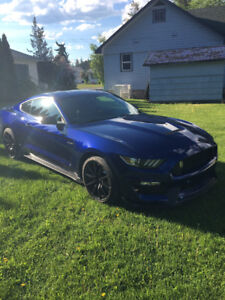 2016 Ford Mustang Shelby GT350 Coupe (2 door)
