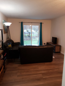 Beautiful 2 bedroom apartment in Meadowbrook area.