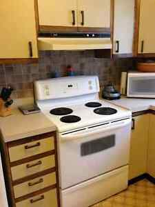 Kitchen Cabinets - Great for Cottage or Garage!