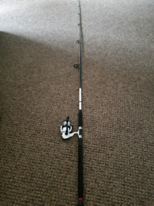 DAIWA D-Wave Spinnimg Rod/Reel Combo