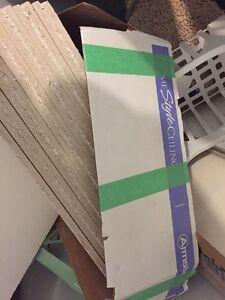 2x2 ceiling tiles