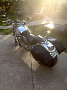 2001 Harley Davidson vrsc
