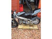 Polini mini moto