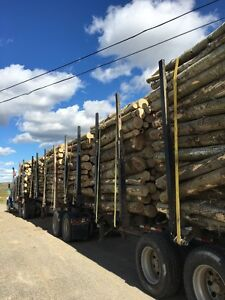 2009 Superior B- Train Log Trailer