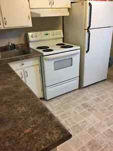 2 Bedroom Apartment for rent PETS CONSIDERED St. John's Newfoundland image 3