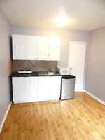 STUDENT DORM STYLE ROOMS FOR RENT STEPS TO OTTAWA U - SANDY HILL