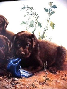 """Hand Signed Lithograph by Amy Brackenbury """"Chocolate Cluster"""" Stratford Kitchener Area image 8"""