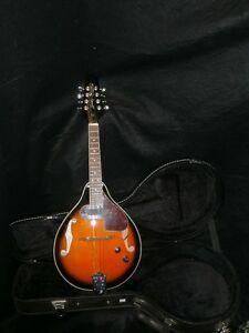 Smoky Mountain Electric Mandolin with Hard case