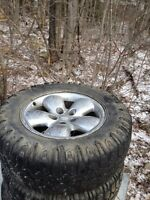 Rims and tires $800 obo