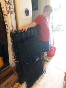 2 lg Dog Crates $200 for both