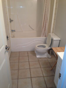 Newly Renovated two (2) Bedroom Suite with Balconey by Whyte Ave