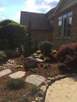 Landscape Build/ Maintenance