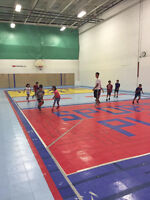 Basketball, volleyball, ball hockey best rates in the gta! Book