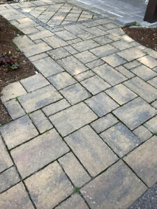 Quality Interlocking Stone for Sale