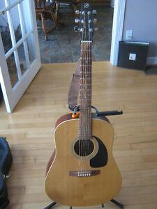 Seagull S6 + Spruce Guitar