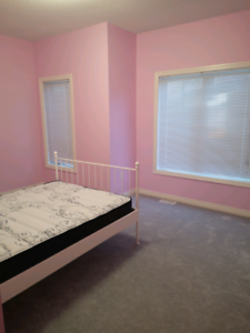Clean and Furnished room for rent