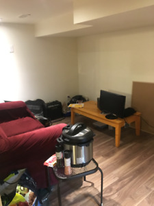 Summer Student Sublet: 2-bedroom basement apartment