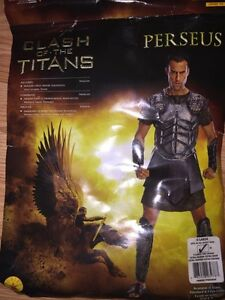 "Clash of the Titans ""Perseus"" Costume"