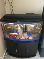 Complete 55 gallon bow front tank