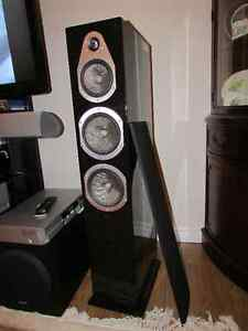 ENERGY Veritas 6.3 Floorstanding speakers