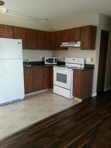 Spacious and Affordable 2 Bedroom Apartment in Innisfail