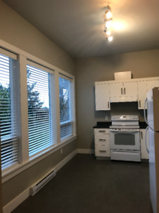 2 bed Basement Suite-East Abbotsford