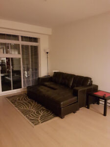 UBC Campus: May-August Sublet (with possibility of extension)