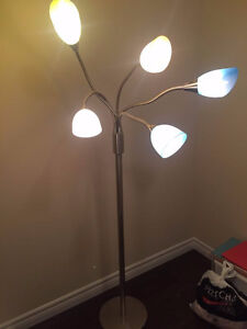 Floor lamp on sale (price is firm)
