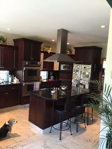 Custom kitchen All stainless steal appliances and granite counte