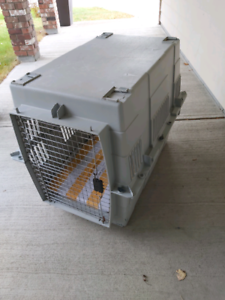 Large dog crate kennel with removeable bed inside.