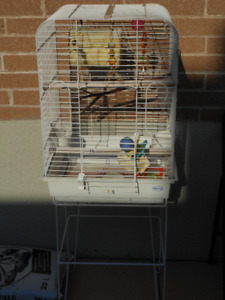 bird cage for different birds